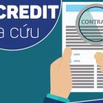 Cách tra cứu, kiểm tra số hợp đồng vay Fe Credit bằng CMND