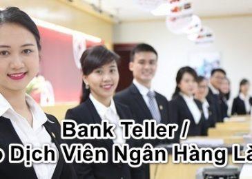 Bank Teller / Giao Dịch Viên Ngân Hàng Là gì, làm gì, công việc,…?
