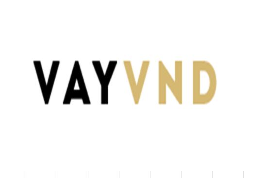 logo-vayvnd
