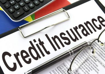 Bảo hiểm khoản vay có được trả lại không? Phí, có nên mua không?