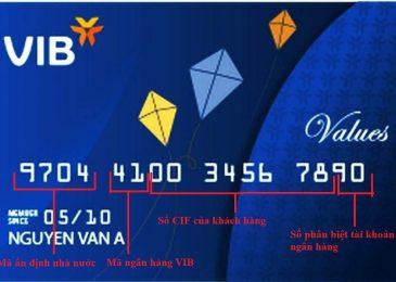 Số thẻ ATM là gì? Ghi ở đâu? Cách kiểm tra khi quên