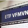 Quỹ ETF VFMVN30 là gì? Tìm hiểu, thông tin, reiview 2021