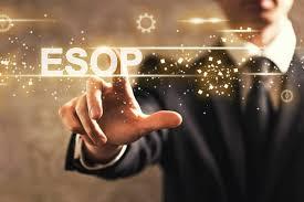 Co-phieu-esop